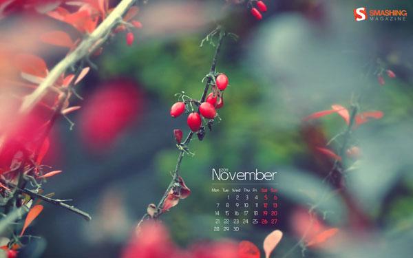 осенние обои ноябрь