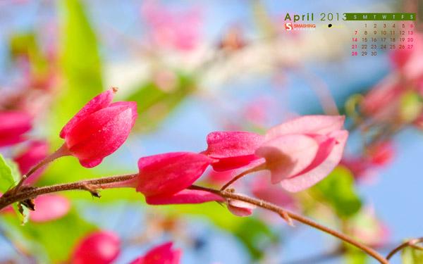 красивые обои весна 2013