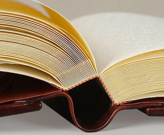 книги в кожаном переплете embargo