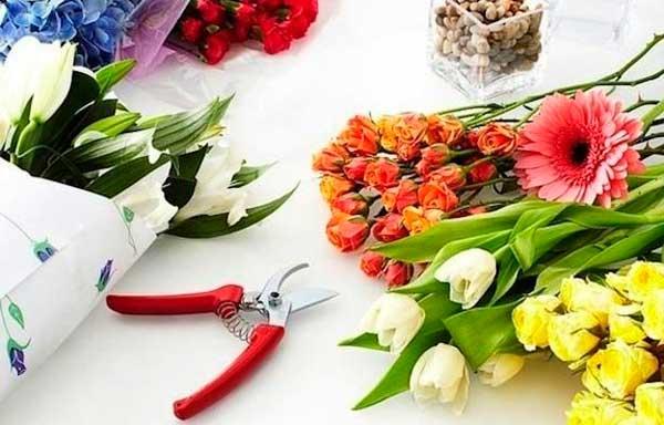 продлить жизнь срезанных цветов
