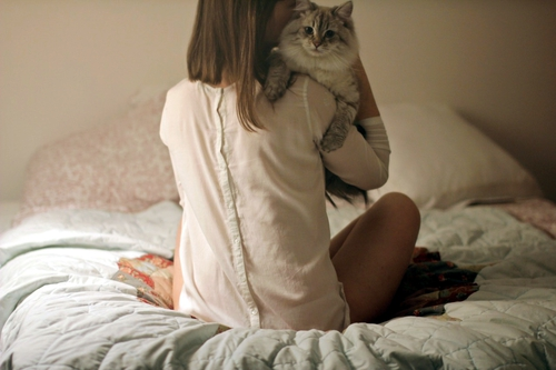 отучить кота спать на постели