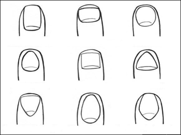 что форма ногтей говорит о человеке