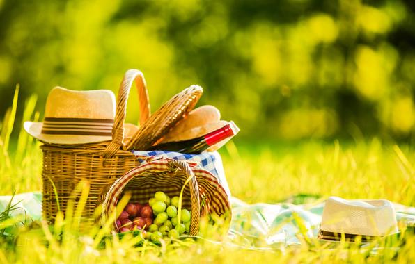 правила удачного пикника