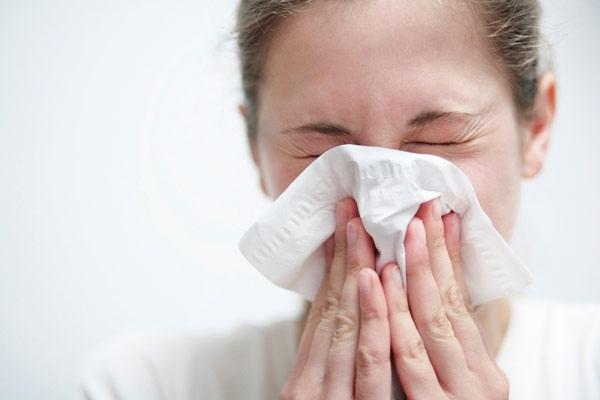 бытовые аллергены