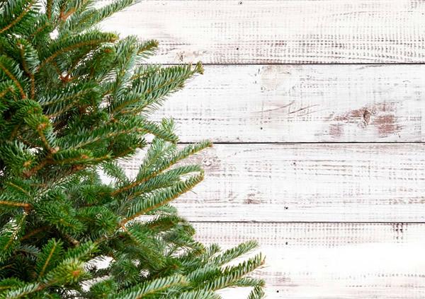 выбрать искусственную новогоднюю елку