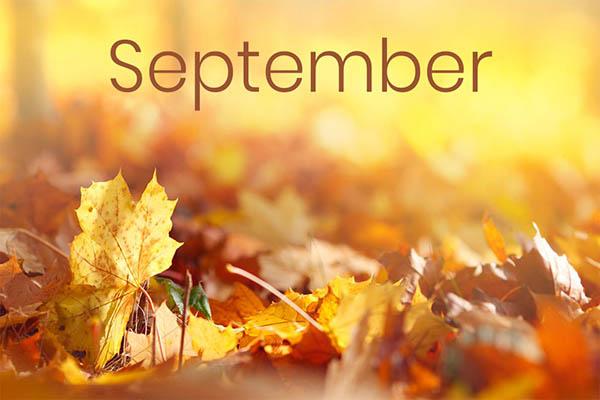 что стоит сделать в сентябре